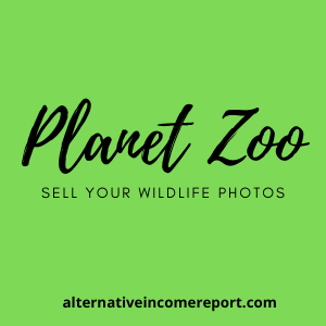 Sell your wildlife photos