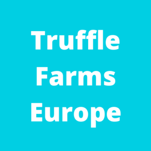 Invest in truffle farms